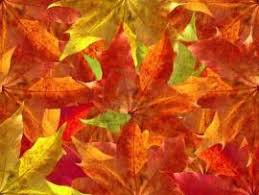 Fall Ppt Backgrounds Page 2 Download Free Fall Powerpoint Templates