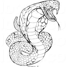 Cobra clipart coloring page - Pencil and in color cobra clipart ...