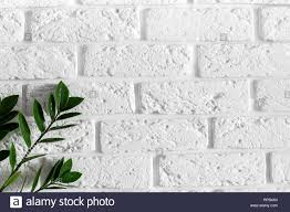 Interior Design Background Pictures Green Plant Branch On White Brick Wall Modern Home Interior