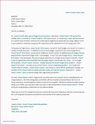 Personal Resume Template Free Personal Letter Re Mendation Cfo