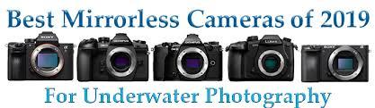 Canon Digital Slr Comparison Chart Mirrorless Camera Comparison Chart Bluewater Photo