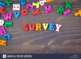 Survey Various Colored Wooden Letters On A Dark Plate Stock