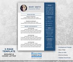 Executive Resume Templates Word Simple Executive Resume Template Word Shatterlion