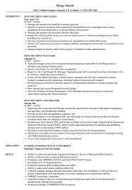Site Security Resume Samples Velvet Jobs