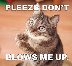 exploding cats. Delighful Exploding Exploding Kittens Gnyigk For Cats E