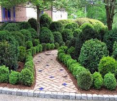 Small Picture Garden Design Garden Design with Landscaping Ideas for Front