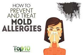 How to Prevent and Treat Mold Allergies | Top 10 Home Remedies