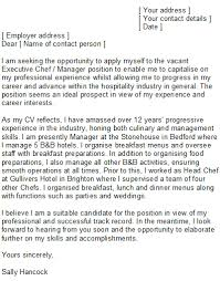Experienced Professional Cover Letter Sample Chef Cover Letter