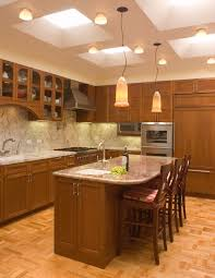 kitchen ambient lighting. Kitchen Led Lighting Traditional With Ceiling Lights Dark Wood Ambient