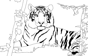 Small Picture Lion Face Coloring Page Beautiful Free Lion Coloring Pages With