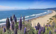 23 Best Marin County Beaches Images California Beach