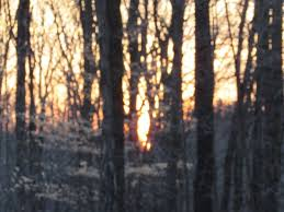 Sunset near Mabel Smith Shelter. Crowell Hilaka ~ Richfield Heritage  Preserve. - Picture of Richfield Heritage Park - Tripadvisor