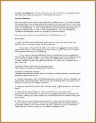 23 Executive Summary Example Resume Riverheadfd