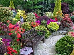 beauty full flower garden
