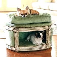 petlife outdoor patio raised dog bed with canopy pet beds awesome for indoors and outdoors wi