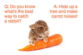 py kids jokes that are so py they re hilarious carrot noises