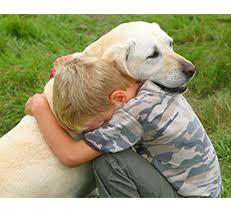 Emotional support animal real Certapet Usa Service Dog Registration Emotional Support Animal Emotional Support Dog