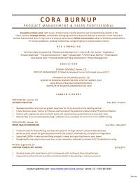 Product Management Resume Data Product Manager Resume Sample Management Resumes Samples 80