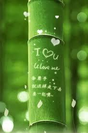 i love you green bamboo iphone 6 plus