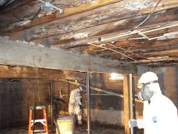 mold mitigation cost. Perfect Mitigation Mold Remediation Cost Costs A Hold On Llc Inside Mitigation