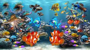 Fish Tank Moving Desktop Backgrounds Aquarium Colors Screensaver