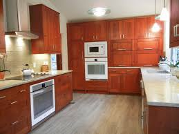 Small Picture Semi Custom and Prefab Kitchen Cabinets Ideas Prefab Homes