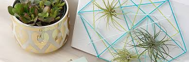 diy air plant string art tutorial 4