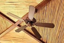 full size of bamboo ceiling fan singapore blade covers fans uk wooden on a tropical style