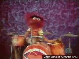 animal muppet drums gif.  Gif Throughout Animal Muppet Drums Gif