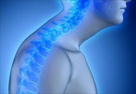 Resultado de imagem para postura do pescoço