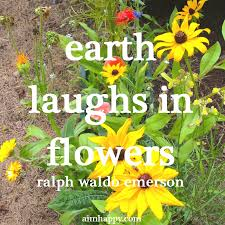 Flower Quotes Inspiration 48 Flower Quotes To Brighten Your Day