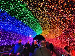Cincinnati Zoo Tickets Festival Of Lights Rainbow Light Tunnel At The Festival Of Lights At The