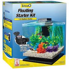 small screenshot 1 office fish. modren fish tetra aquarium cube tank 15 gal with small screenshot 1 office fish