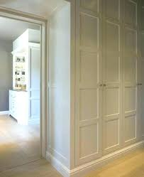 amusing built in storage cabinets with doors cabinet bedroom system build 60 x 24