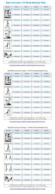 Bodybuilding Exercises Chart Free Download 57 Prototypical Routine Exercise Chart For Gym