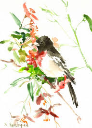 rose ted grosbeak 12 x 9 original watercolor painting red