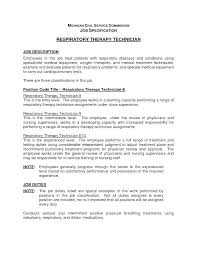 Automotive Resume Mesmerizing Sample Resume For Customer Service Director As Well As Lube
