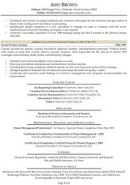 Compliance Analyst Resume Gorgeous Finance Resume Examples Resume Professional Writers
