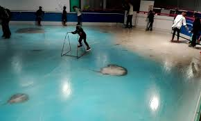 a anese skating rink that froze 5 000 dead fish into the ice as an attraction for visitors has been forced to close after receiving a barrage of