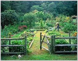 Garden Plan Layouts Garden Layout Planner Easy Vegetable Garden Plan Garden Layout