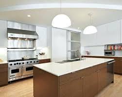 Houzz Kitchen Ideas Awesome Decorating