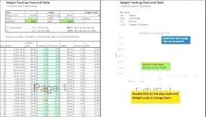 Weight Log Template Weight Loss Tracking Spreadsheet Template