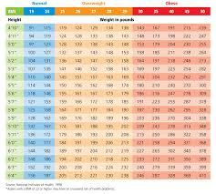 Bariatric Bmi Chart Unique Bmi Females Chart Xlstemplate Xlsformats