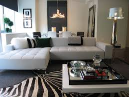 Zebra Rug Living Room Decoration Industrial Style Interior Designer Youll Want For