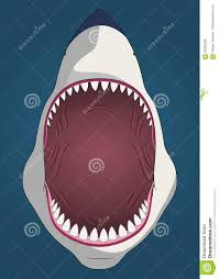 Dessin Requin Bouche Ouvertell
