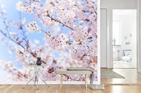 Schilderijen Winkelexpert Vlies Fotobehang Japanse Kersenbloesem