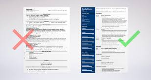 Examples Of A Good Resume Template Technical Resume Sample And Complete Guide [24 Examples] 21