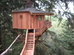 Watch Treehouse Masters Branched Out Free  WatchStreem  Stream Treehouse Masters Free Episodes