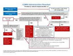 Cobra Qualifying Events Chart Cobra Compliance State Continuation Clarke Benefits