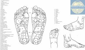 Foot Illness Chart Printable Reflexology Foot Chart Showing Pressure Points